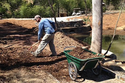 A gardener shovels dirt and soil into a wheelbarrow.