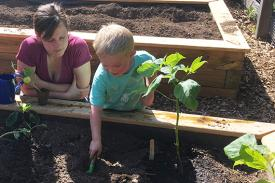 A child digs in the soil.