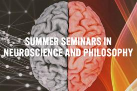 Picture of art for Summer Seminars program