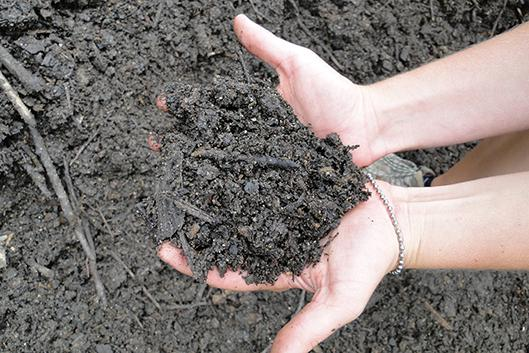 Good soil is the key to garden success