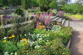 Colorful borders will enhance your garden