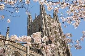 Duke Chapel in spring