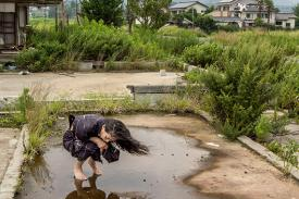 "Japanese choreographer and dancer Eiko Otake squatting and staring into a puddle of water in Fukushima, Japan, on July 23, 2014, performing ""Yaburemachi, No. 6."""