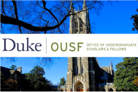 Office of undergraduate scholars and fellows