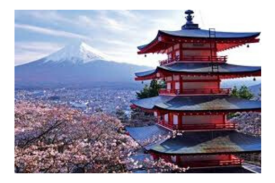 Study Abroad and Internship Opportunities in Japan