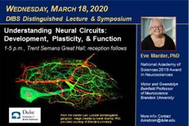 Picture of promotional e-postcard for Eve Marder lecture March 18