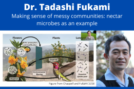Dr. Tadashi Fukami and a diagram representing pollinators, flowers and microbes.