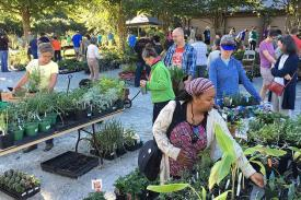 shoppers at the plant sale