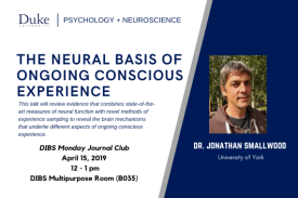 The Neural Basis of Ongoing Conscious Experience | Dr. Jonathan Smallwood, University of York