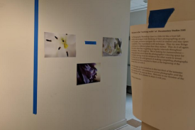 Student exhibit-in-progress