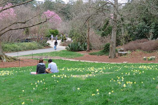 Visitors to Duke Gardens taking in the moment.