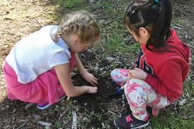 Children digging in the soil