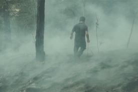 Man walks through burning forest.