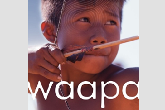 poster image for Waapa, young boy with a bow and arrow
