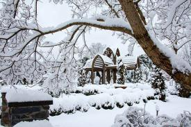 Snowy view of the Page-Rollins White Garden