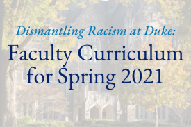 faculty curriculum