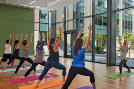 Instructor and 6 students all practicing yoga on their colorful mats inside the student wellness center room that is surrounded by nature