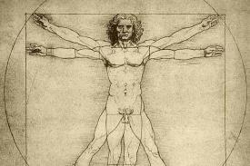 Leonardo drawing of a cis-gender male human body