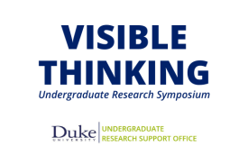 Visible Thinking, Undergraduate Research Symposium